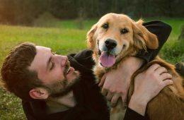 """Cassa di Risparmio di Volterra, in collaborazione con Europ Assistance Italia lancia la polizza assicurativa """"My Pet"""" dedicata ai cani ed ai gatti."""
